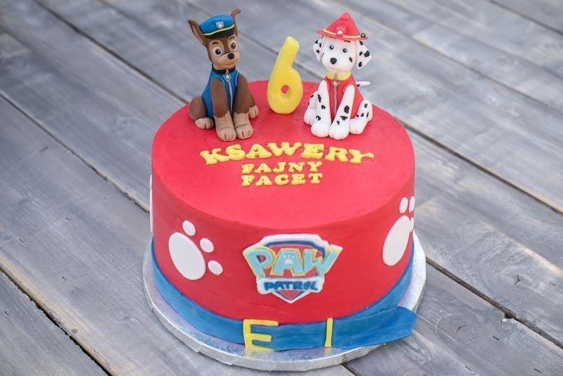 Tort dla dziecka 10